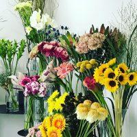 今日も色とりどりのお花たちと一緒にお待ちしています(2019.07.26)