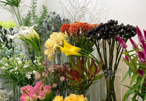 今日も色とりどりのお花たちと一緒にお待ちしています(2019.09.13)