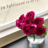 今日も色とりどりのお花たちと一緒にお待ちしています(2019.09.24)