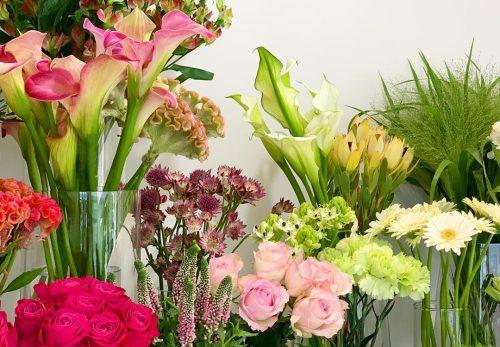 今日も色とりどりのお花たちと一緒にお待ちしています(2019.10.26)
