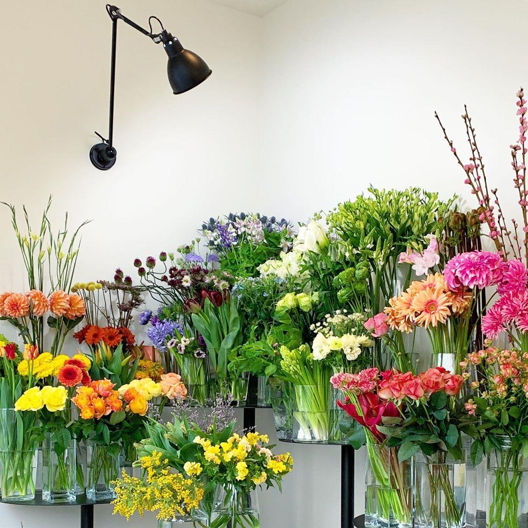 ご自宅用のお花のデリバリーをします(不定期)(2020.03.04)