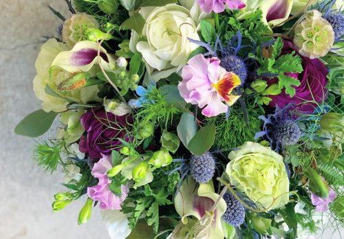 今日も色とりどりのお花たちと一緒にお待ちしています(2020.03.23)