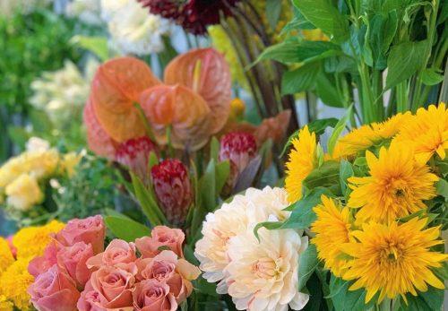 今日も色とりどりのお花たちと一緒にお待ちしています(2020.06.23)