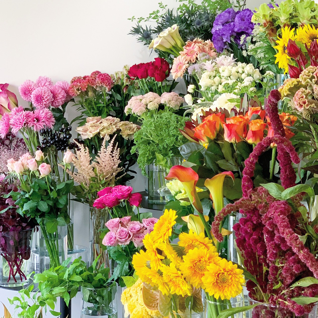 お花は少しずつ夏から秋へ(2020.08.30)