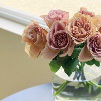 今日も色とりどりのお花たちと一緒にお待ちしています(2020.09.18)