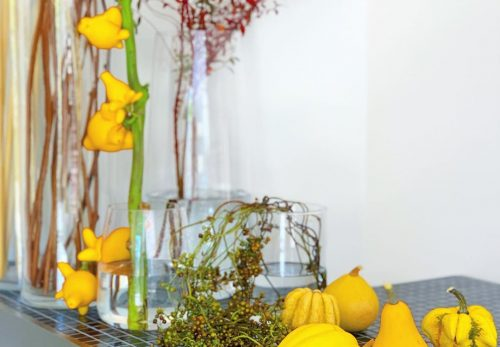 今日も色とりどりのお花たちと一緒にお待ちしています(2020.10.30)