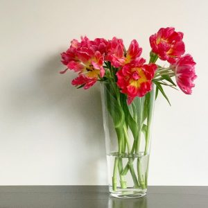 今日も色とりどりのお花たちと一緒にお待ちしています(2020.11.29)