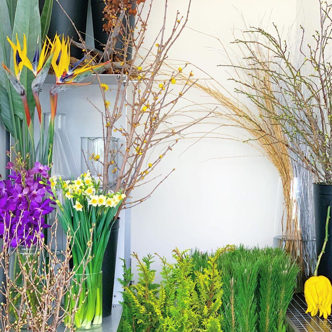 お正月を彩る清々しい早春の香り(2020.12.26)