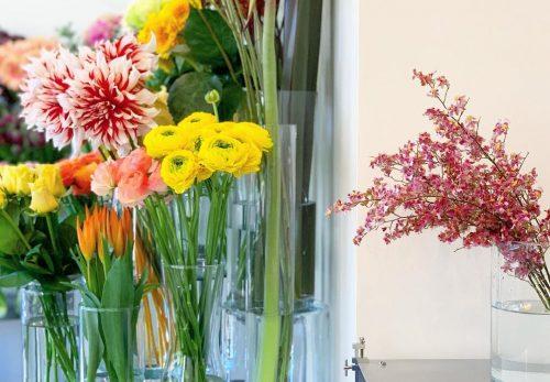 今日も色とりどりのお花たちと一緒にお待ちしています(2021.01.09)