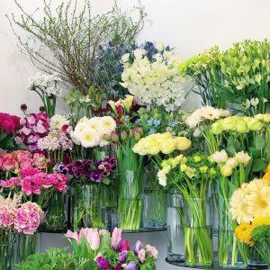 今日も色とりどりのお花たちと一緒にお待ちしています(2021.01.26)