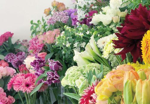 お花を添えて贈りませんか(2021.02.13)