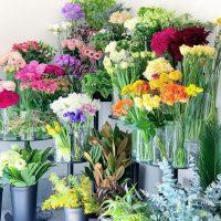 今日も色とりどりのお花たちと一緒にお待ちしています(2021.02.27)