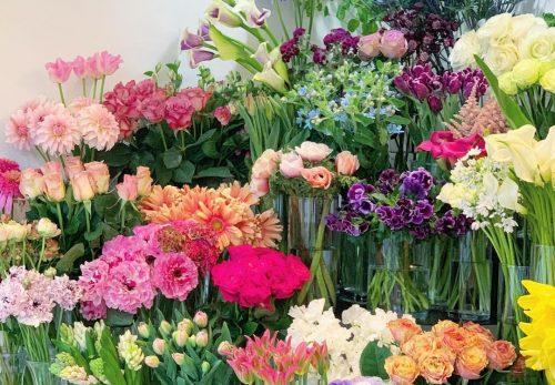 今日も色とりどりのお花たちと一緒にお待ちしています(2021.03.20)
