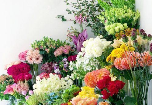 春のお花たち、今年もそろそろお別れです(2021.04.04)