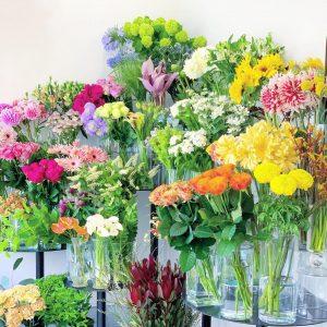 今日も色とりどりのお花たちと一緒にお待ちしています(2021.05.15)