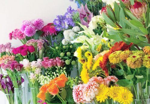 今日も色とりどりのお花たちと一緒にお待ちしています(2021.06.07)
